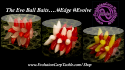 Ball Baits #Edge #Evolve